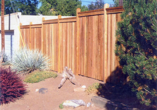 Red Cedar Privacy Fence in Centennial